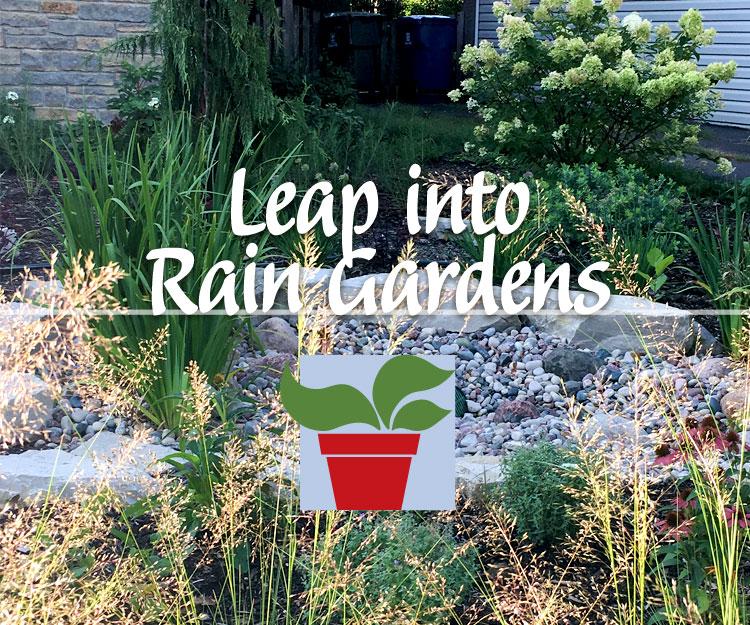 Leap into Rain Gardening