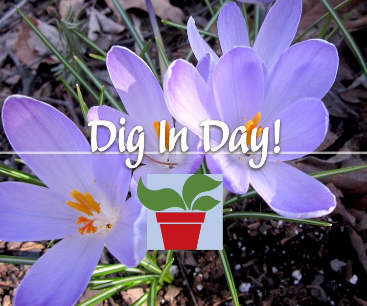 Dig In Day!