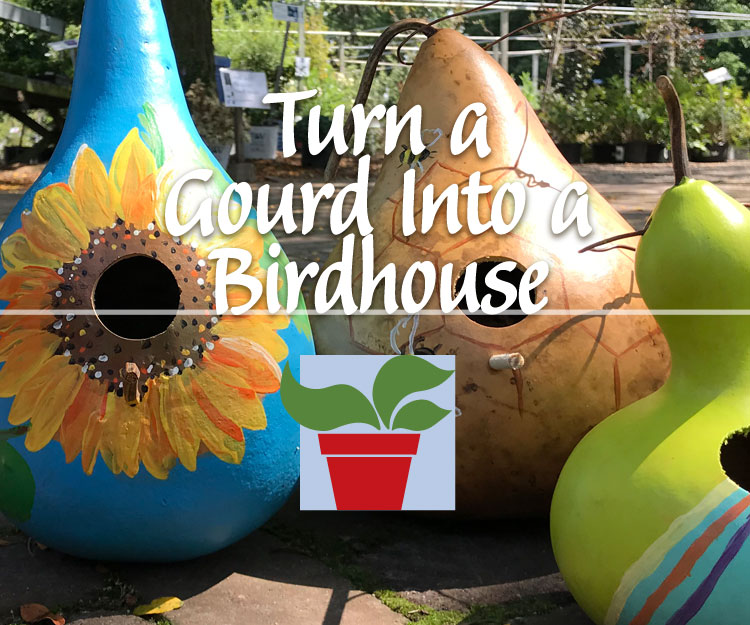 Postponed: Turn a Gourd Into a Birdhouse