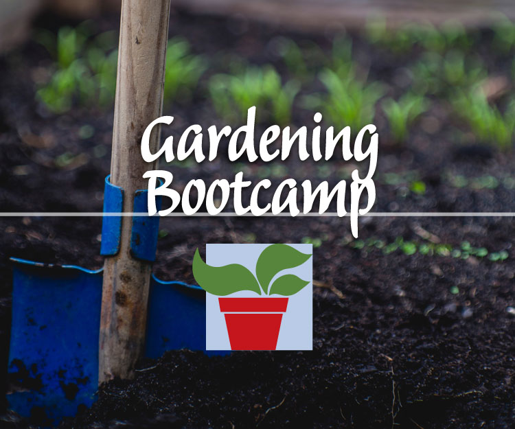 Postponed: Gardening Bootcamp – 1pm Session